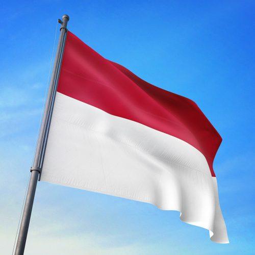 【特許・意匠ニュース】 インドネシアにおける医薬用途クレームに関する新審査ガイドラインの概要