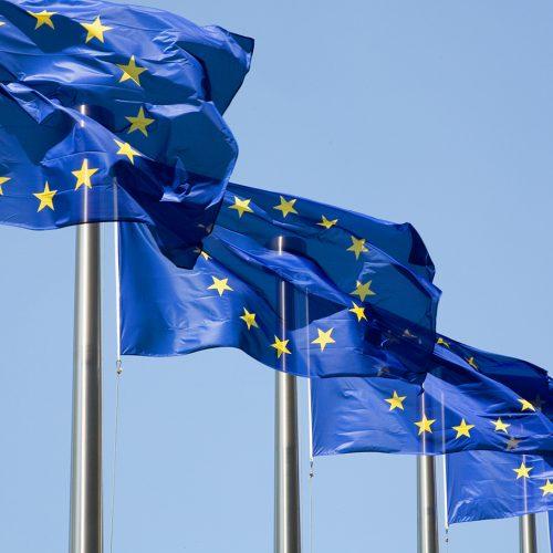【意匠ニュース】欧州共同体意匠 欧州一般裁判所(EGC)、欧州連合知的財産庁(EUIPO)の審判部による技術的機能の特徴に基づく無効宣告を覆す